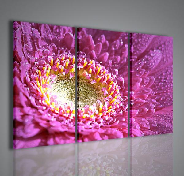 Quadri moderni quadri fiori e piante the beautiful flower for Piante arredamento moderno