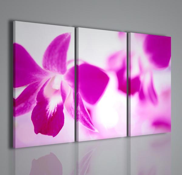 Quadri Moderni-Quadri Fiori e Piante-Abstract Flower | Arredamento ...