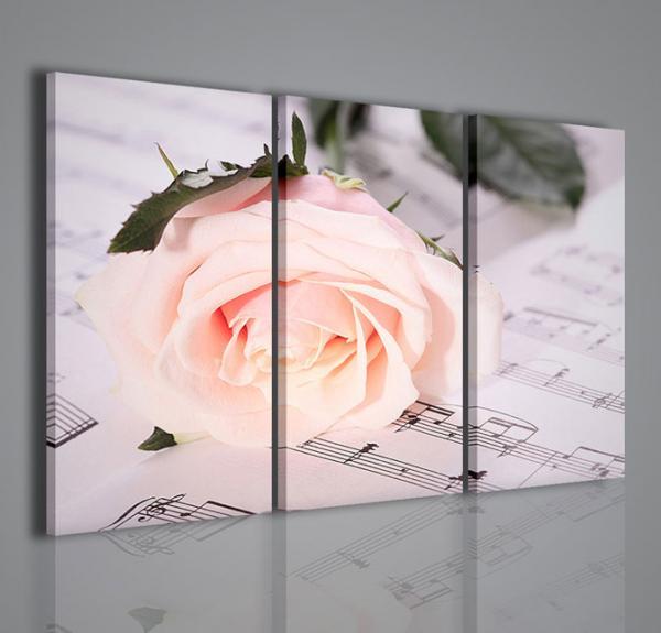 Quadri Moderni-Quadri Fiori e Piante-Melody White Rose ...