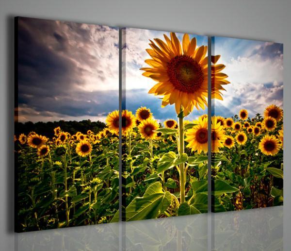 Quadri moderni quadri fiori e piante sunflower v for Piante arredamento moderno