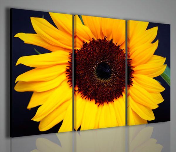 Quadri moderni quadri fiori e piante sunflower iv for Piante arredamento moderno