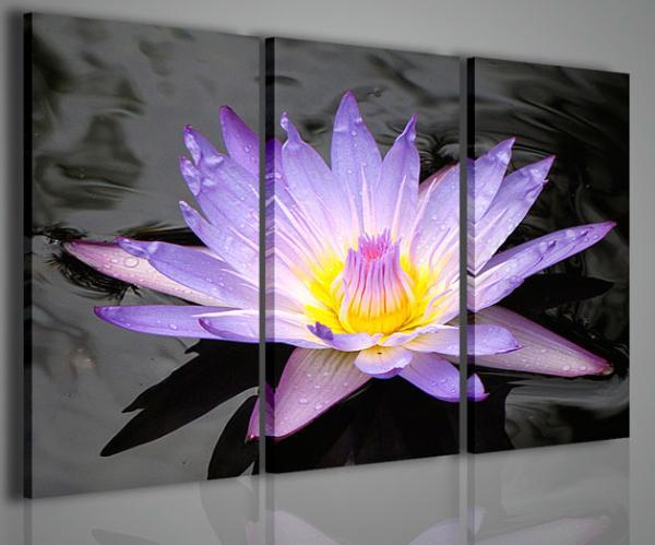 Quadri Moderni-Quadri Fiori e Piante-The Flower of Dreams ...