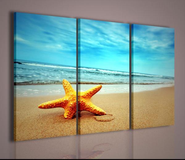 Quadri moderni quadri alternativi star fish arredamento for Stampe moderne per soggiorno