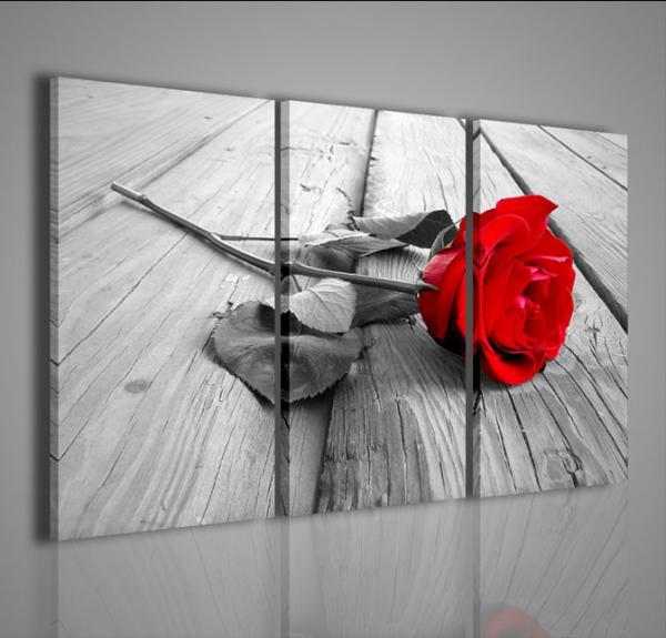Quadri Moderni-Quadri Fiori e Piante-Red Rose Wood | Arredamento ...