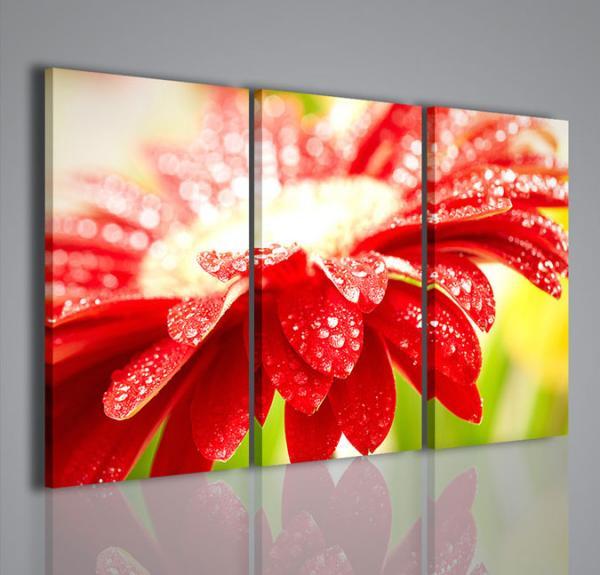 Quadri moderni quadri fiori e piante superb flower ii for Immagini quadri fiori
