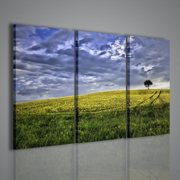 Arredamento moderno quadri moderni su tela quadri for Arredamento natura